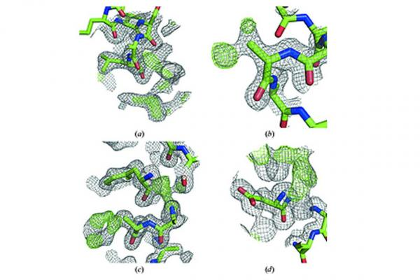 Automated de novo phasing and model building of coiled-coil proteins